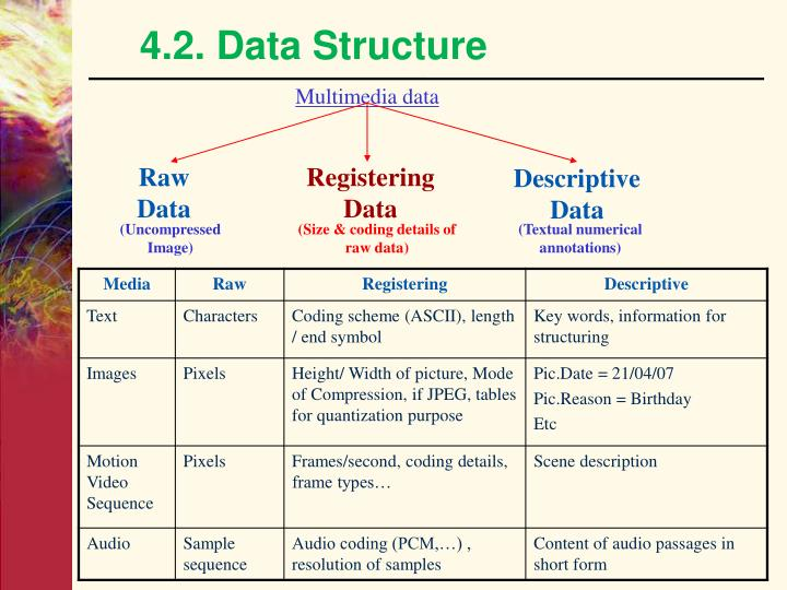 4.2. Data Structure