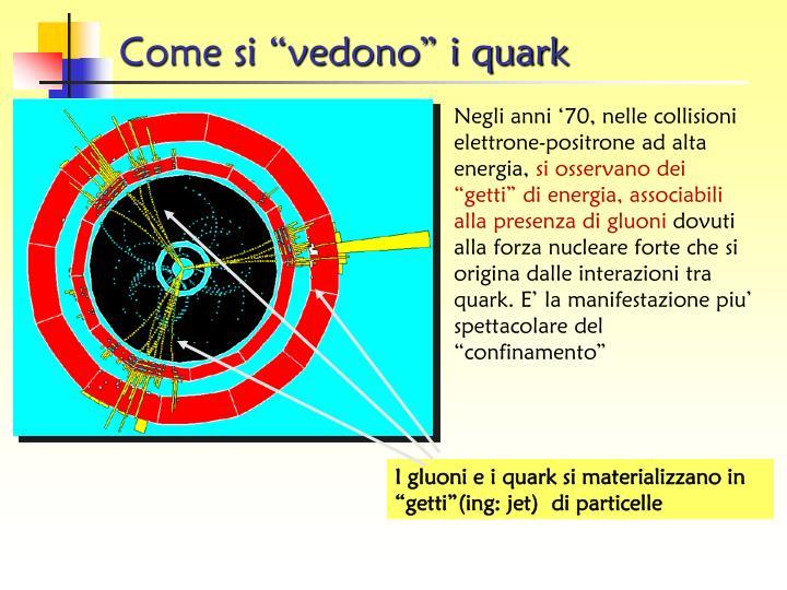 """Come si """"vedono"""" i quark"""