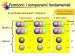 fermioni i componenti fondamentali
