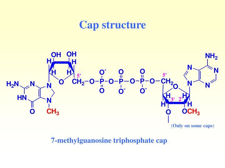 Cap structure