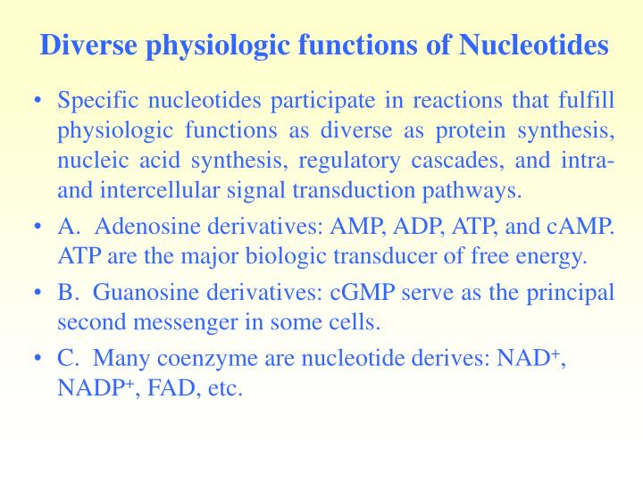 Diverse physiologic functions of Nucleotides