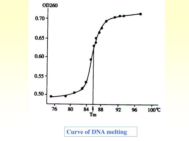 Curve of DNA melting