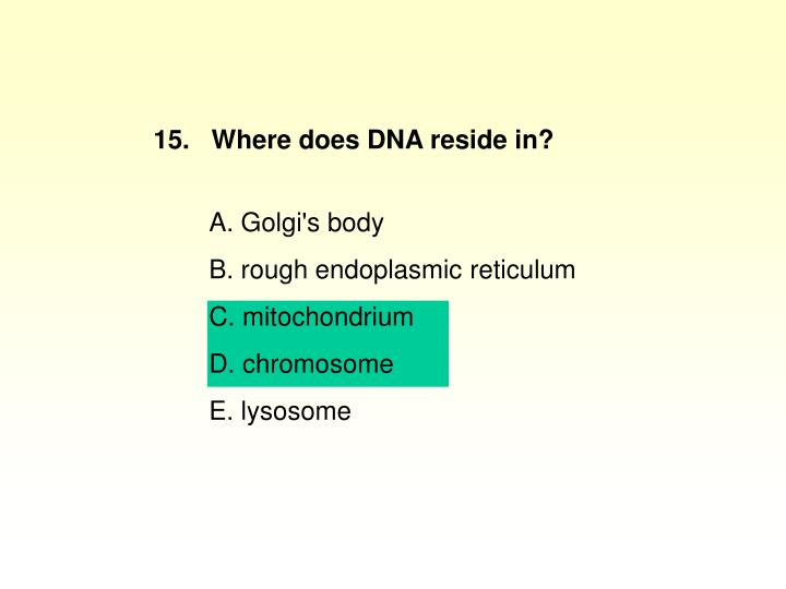 15.   Where does DNA reside in?