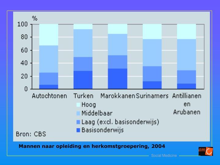 Mannen naar opleiding en herkomstgroepering, 2004