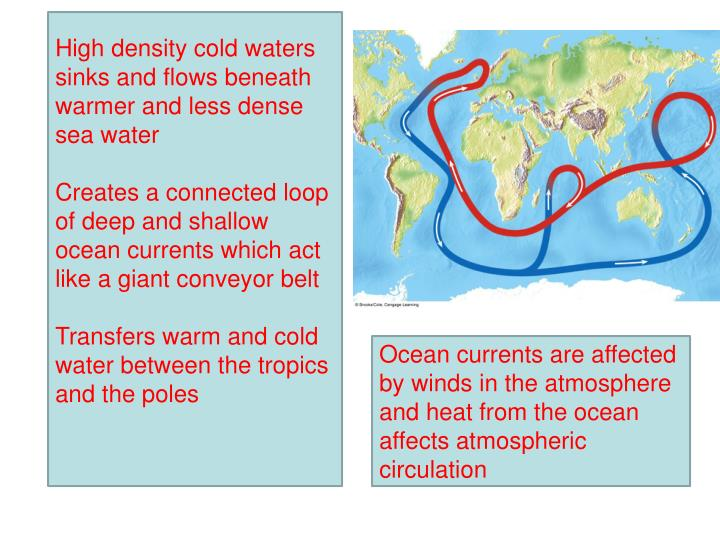 High density cold waters sinks and flows beneath warmer and less dense sea water