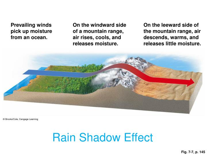 Prevailing winds pick up moisture from an ocean.