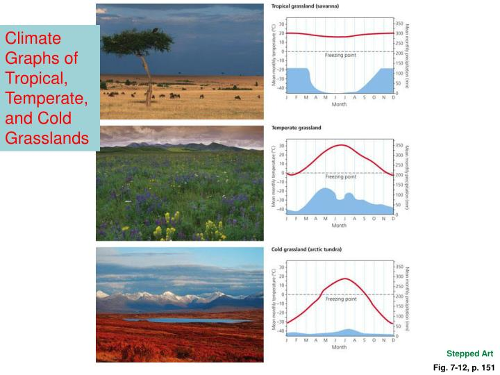 Climate Graphs of Tropical, Temperate, and Cold Grasslands