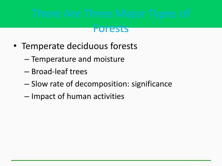 There Are Three Major Types of