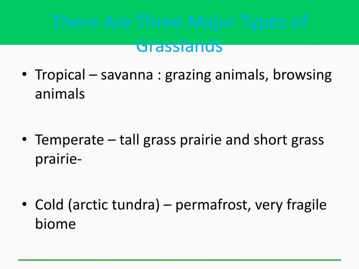 There Are Three Major Types of Grasslands