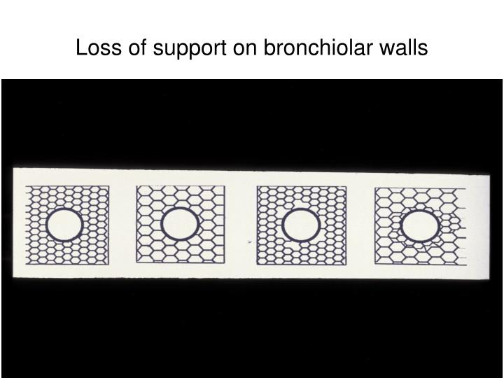Loss of support on bronchiolar walls