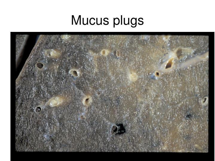 Mucus plugs