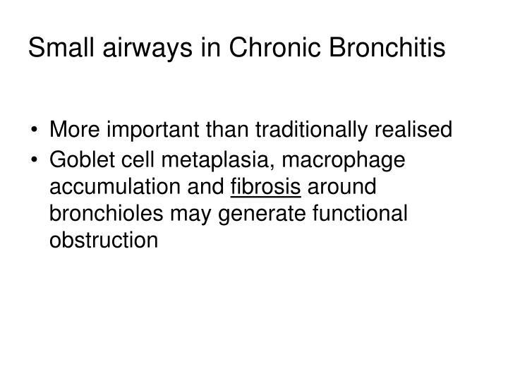 Small airways in Chronic Bronchitis