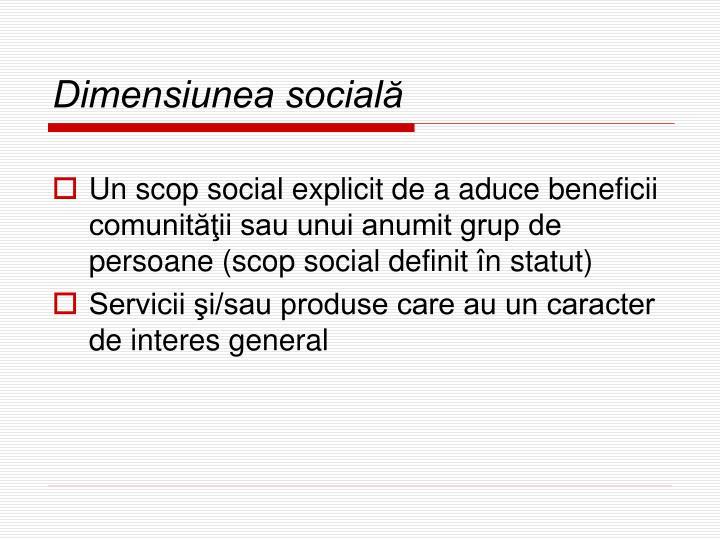 Dimensiunea socială