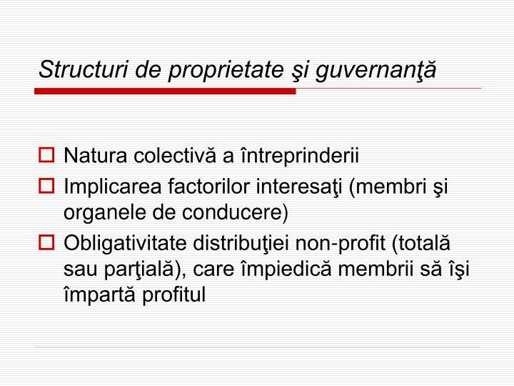 Structuri de proprietate şi guvernanţă