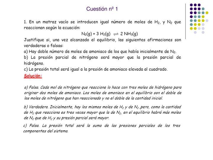 Cuestión nº 1