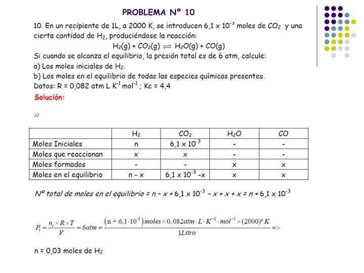 PROBLEMA Nº 10