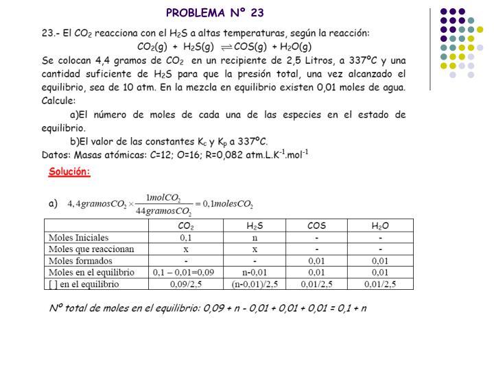 PROBLEMA Nº 23