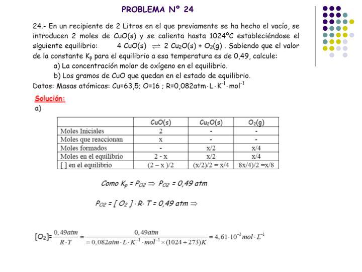 PROBLEMA Nº 24