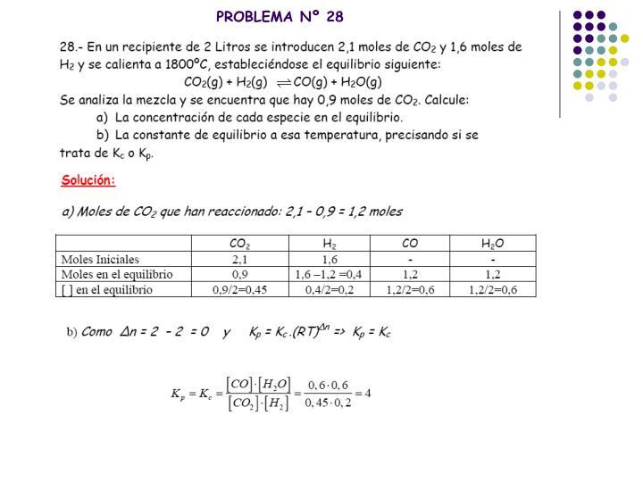 PROBLEMA Nº 28