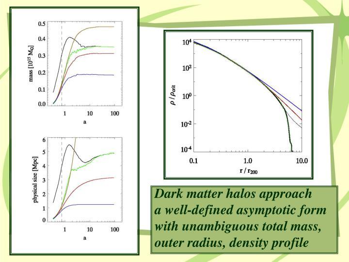 Dark matter halos approach