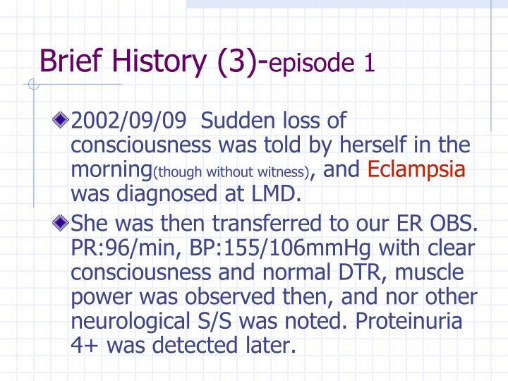 Brief History (3)-