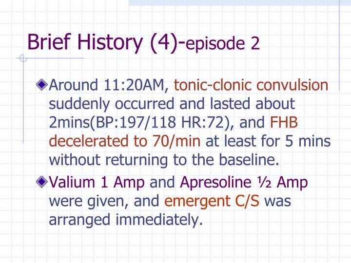 Brief History (4)-