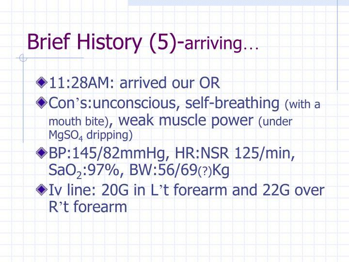 Brief History (5)-