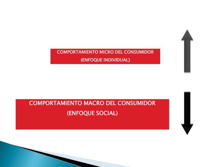 COMPORTAMIENTO MICRO DEL CONSUMIDOR