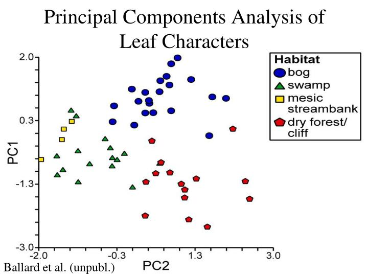 Principal Components Analysis of