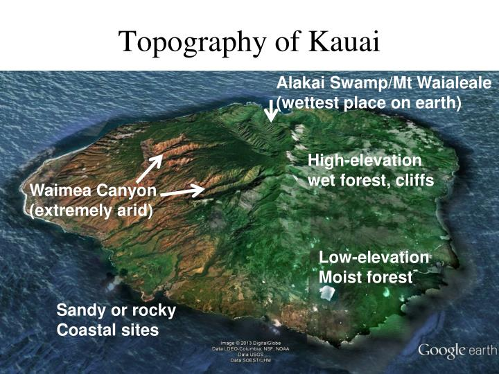 Topography of Kauai