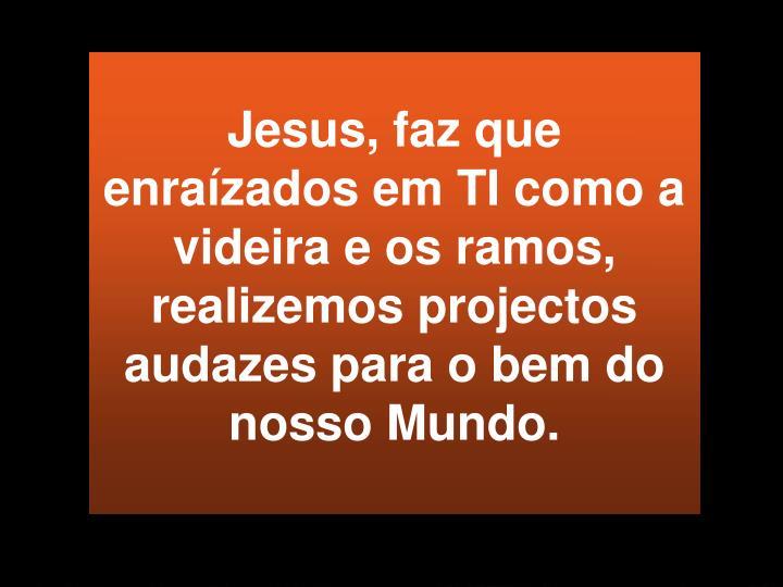 Jesus, faz que enraízados em TI como a videira e os ramos, realizemos projectos  audazes para o bem do nosso Mundo.