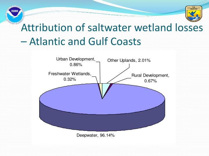 Attribution of saltwater wetland losses – Atlantic and Gulf Coasts