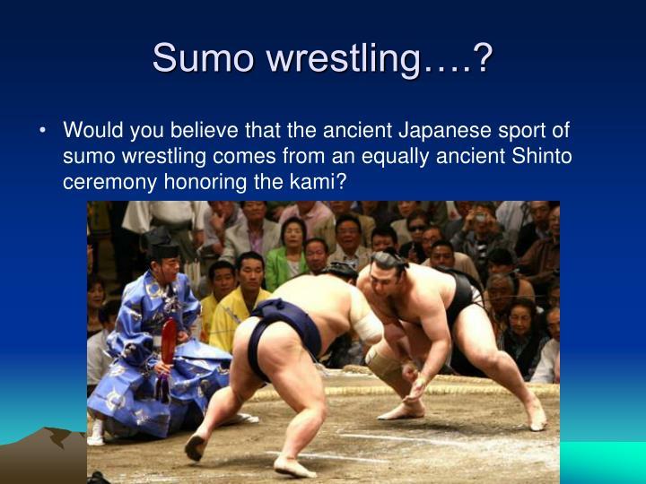 Sumo wrestling….?