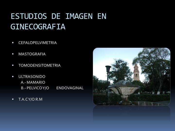 ESTUDIOS DE IMAGEN EN GINECOGRAFIA