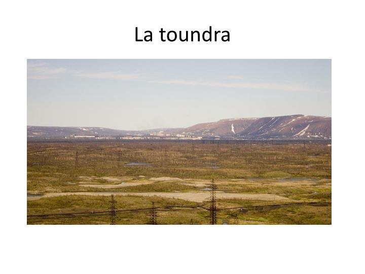 La toundra