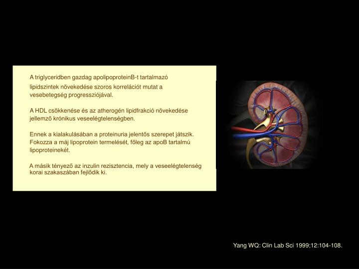 A triglyceridben gazdag apolipoproteinB-t tartalmazó