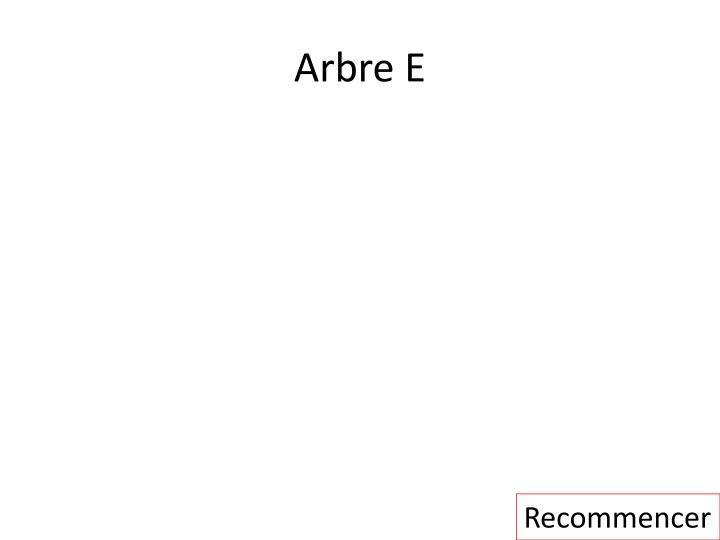 Arbre E