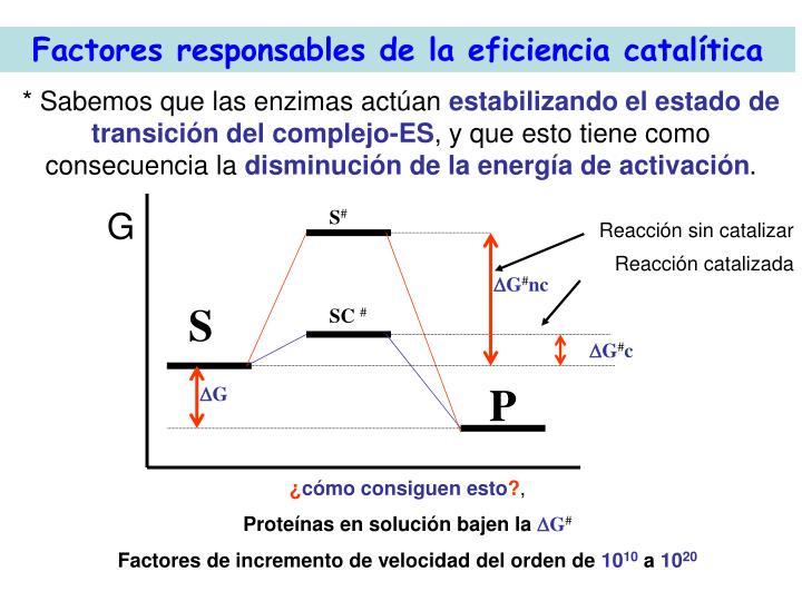 Factores responsables de la eficiencia cataltica