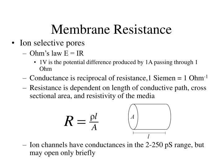 Membrane Resistance