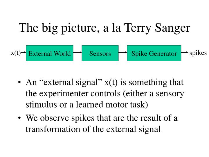 The big picture, a la Terry Sanger