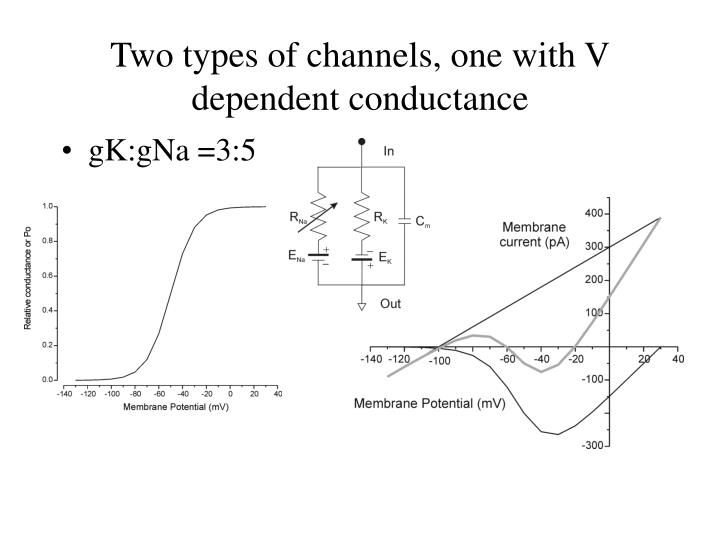 Two types of channels, one with V dependent conductance