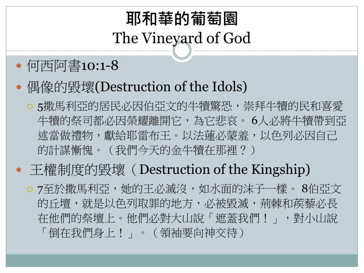 The vineyard of god1