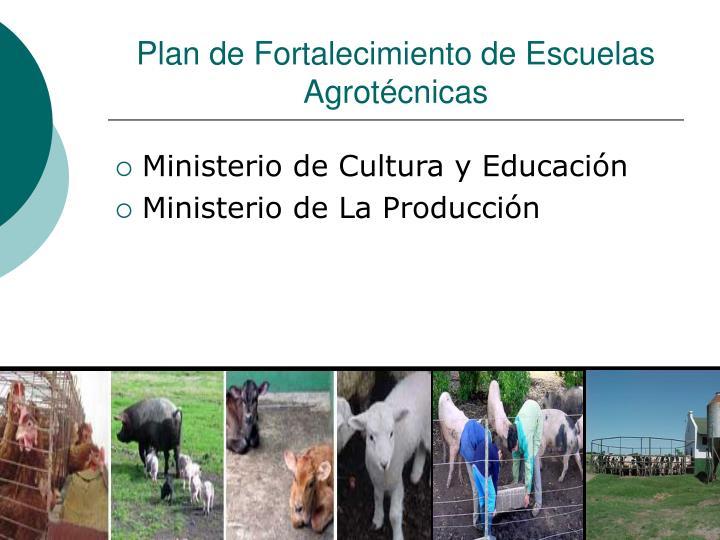 Plan de Fortalecimiento de Escuelas Agrotécnicas