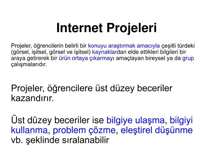 Internet Projeleri