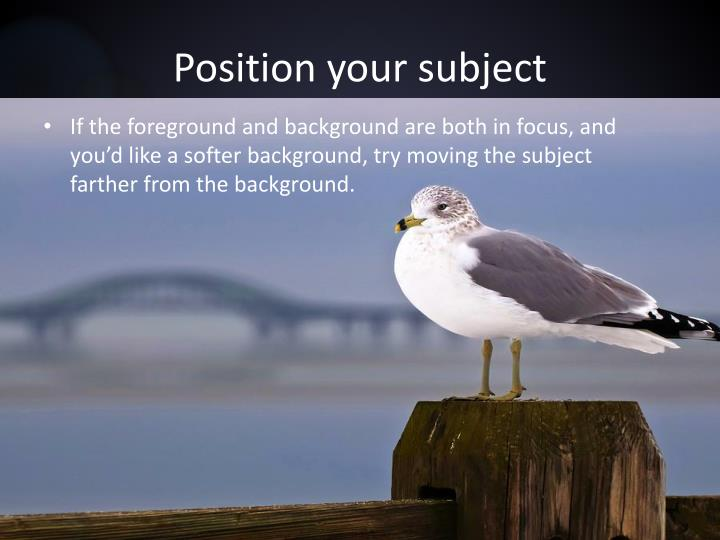 Position your subject