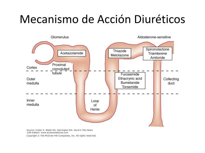 Mecanismo de Acción Diuréticos