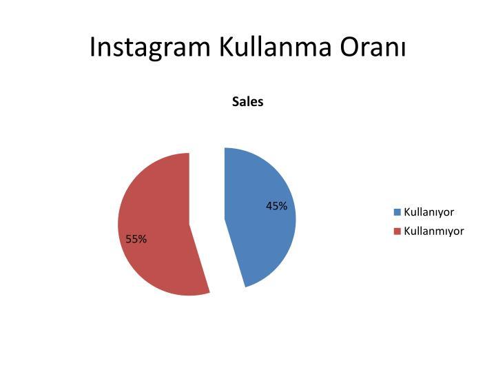 Instagram Kullanma Oranı