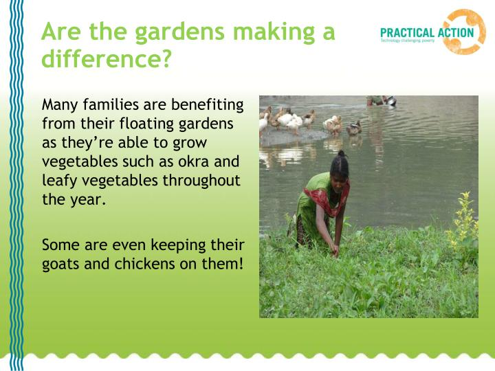Are the gardens making a difference?