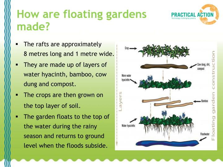 How are floating gardens made?
