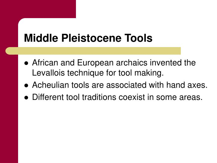 Middle Pleistocene Tools